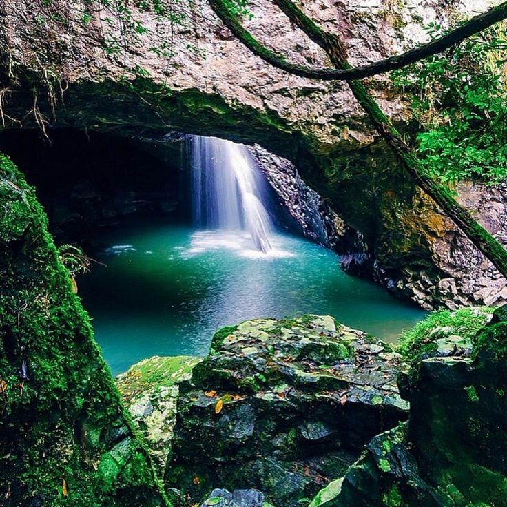 Natural Bridge, Springbrook National Park, Tweed Heads, Australia - One of my favourite places in the #goldcoast hinterland, is this beautiful and magical waterfall called the Natural Bridge. Located in Springbrook National Park #waterfall #australia