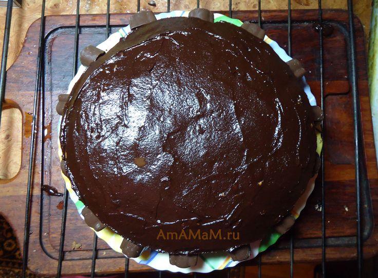 Рецепт торта с ореховым пралине