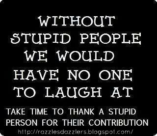 STUPID PEOPLE appreciation