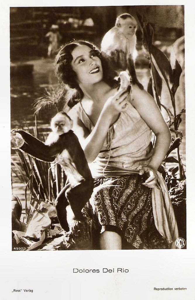 German postcard by Ross Verlag, no. 4993/1, 1929-1930. Photo: Fox.   Mexican and American actress Dolores del Río (1905–1983) was a Hollywood star in the 1920s and 1930s, and one of the most important female actresses of the Golden Age of Mexican cinema in the 1940s and 1950s. Del Río was the first major Latin cross-over star in Hollywood, and was considered  one of the most beautiful faces that have emerged in the Hollywood cinema. She also appeared in several European films.  Dolores del…
