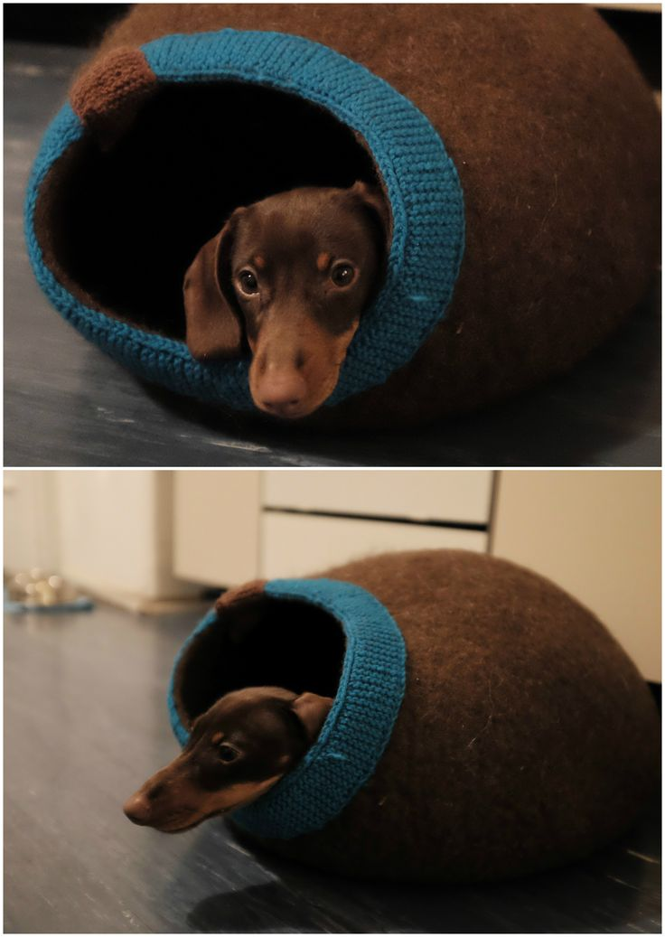 Felted wool cave for cat, puppy Wool house