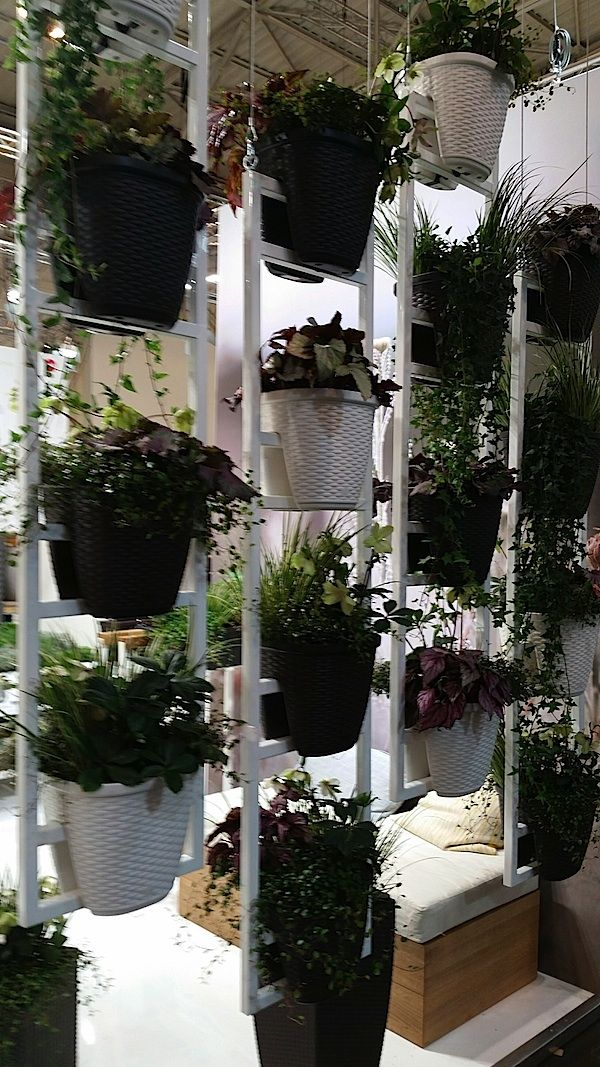 35 best Fun Garden Show Pics from Melbourne Australia images on