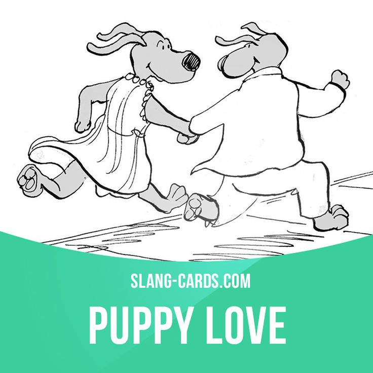 """""""Puppy love"""" means immature love between young people or children. Example: I think my little son likes your little daughter. Puppy love is so sweet! Get our apps for learning English: learzing.com"""