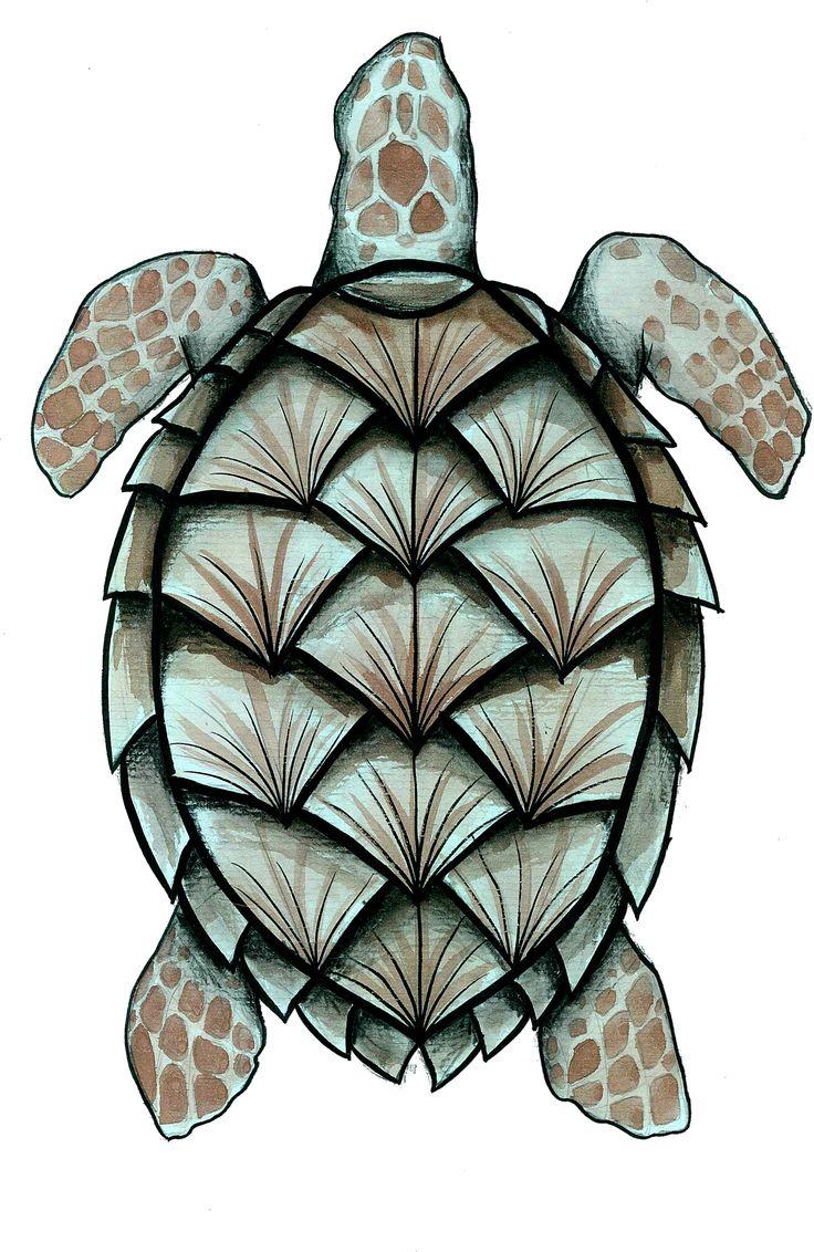 Inspirada na tartaruga de pente.