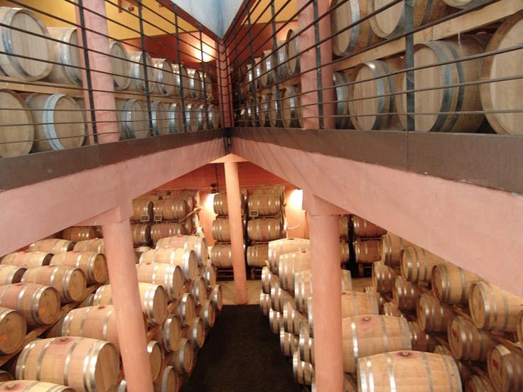Le Chais à barrique du Domaine de l'Arjolle, Côtes de Thongue