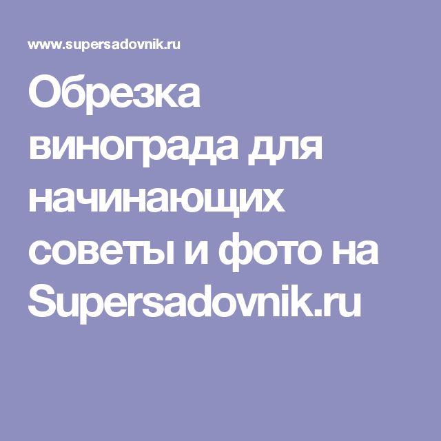 Обрезка винограда для начинающих советы и фото на Supersadovnik.ru