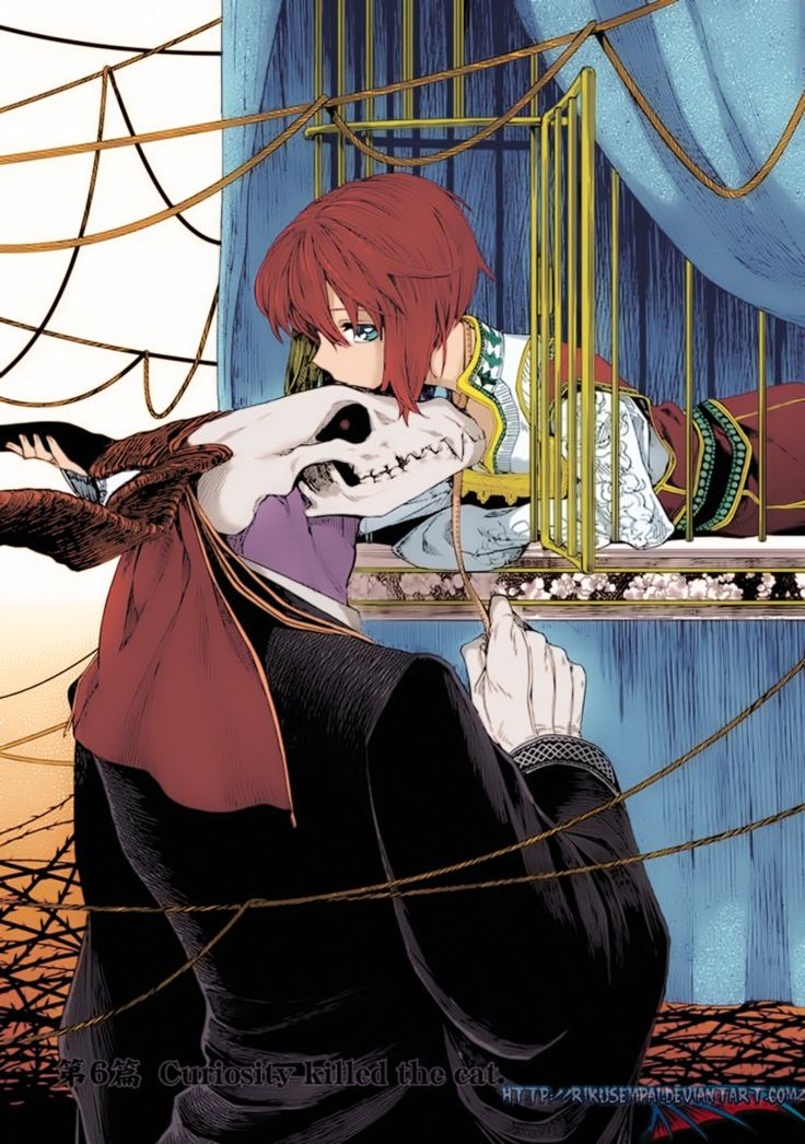 TheAncient Magus'Bride manga coloring done by me, orignal art by Kore Yamazaki.Add to favorite, follow and comment if you like it :3