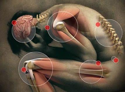 Érzelmi fájdalom táblázat ( Az elme és a test kapcsolata )