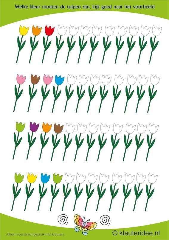 Welke kleur moeten de tulpen hebben, kijk goed naar het begin van de rij , kleuteridee.nl , free printable.