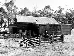 Shearing Shed at Dunkeld (Victoria Aust.)