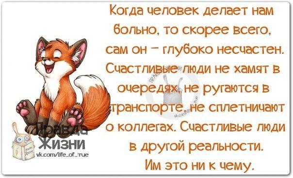 https://pp.vk.me/c540106/v540106334/1c4f2/S0TAbu3YqTg.jpg