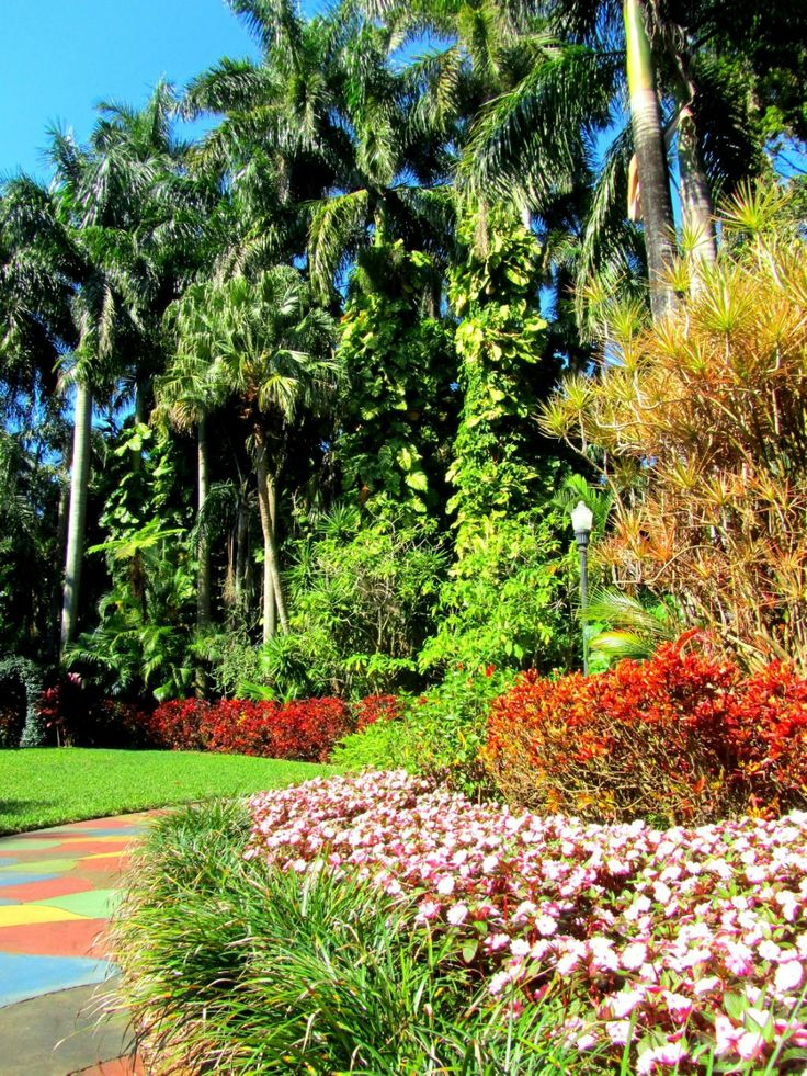 11 Best Sunken Gardens Weddings St Petersburg Fl Images On Pinterest Backyard Weddings