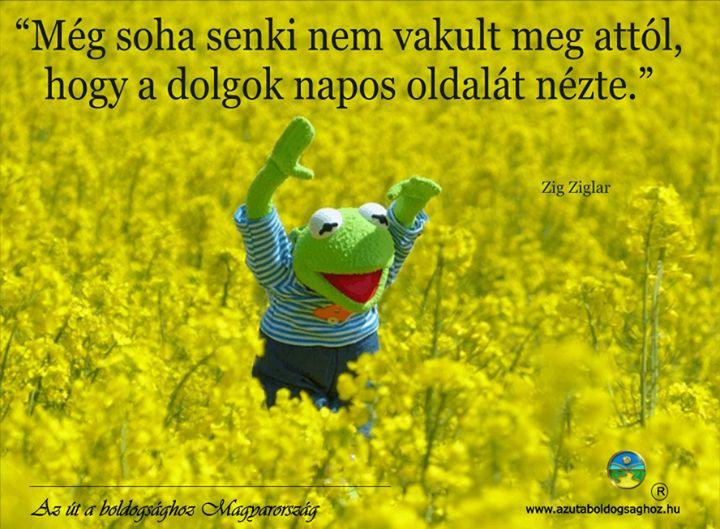 Zig Ziglar gondolata az optimizmusról. A kép forrása: Az Út a Boldogsághoz Magyarország # Facebook