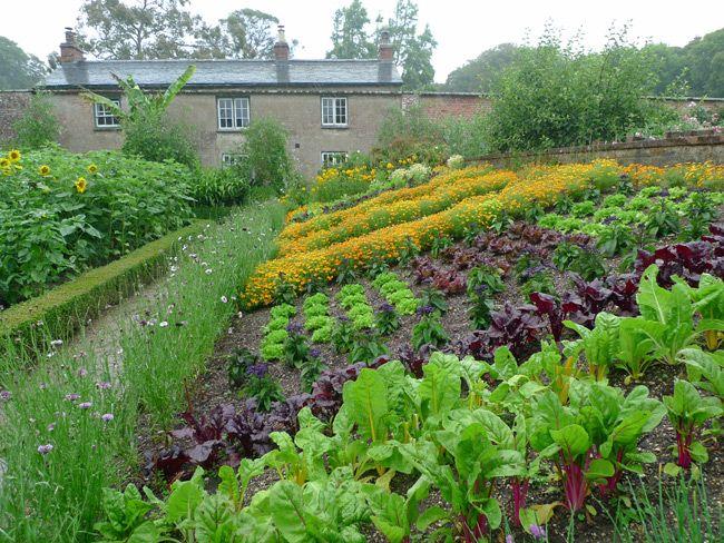 The Veg Garden At Trengwainton, Cornwall