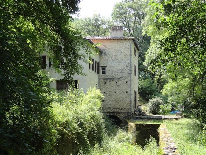 Ancien moulin dans un cadre enchanteur maison en pierre - chambre d hote antraigues sur volane