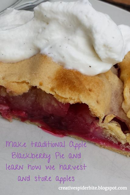 Bitten by that creative Spider: Apple Harvest, Apple Storage and a Recipe for a Traditional Irish Apple Blackberry Pie