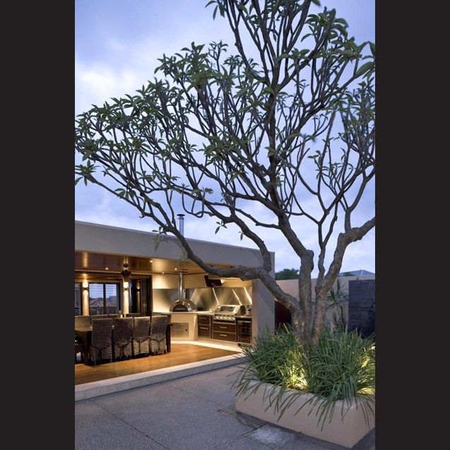 A large frangipani tree creates a centrepiece in the courtyard.