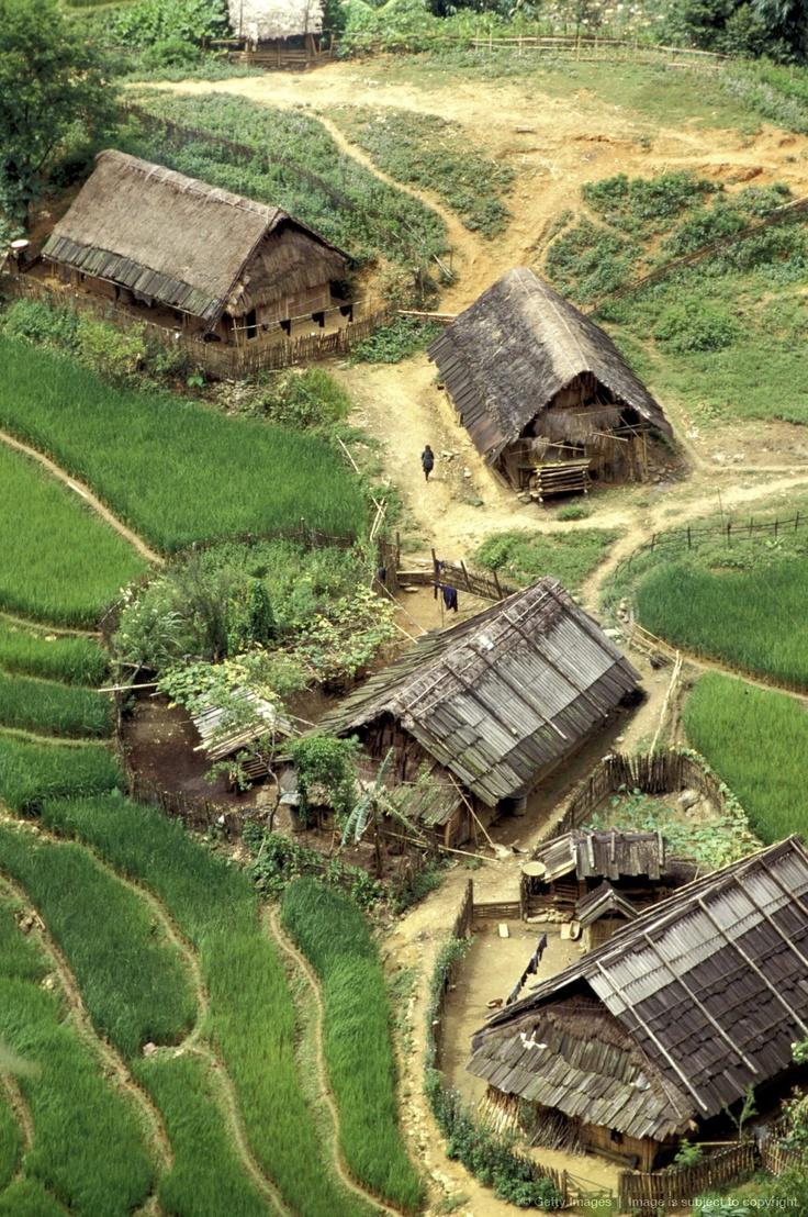 Rice fields in Sapa http://viaggi.asiatica.com/ Vietnam