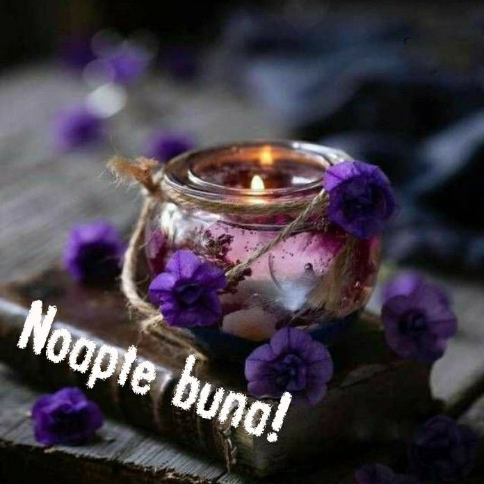Pin By Ortenzia Stircu On Buna Seara Tea Light Candle Good Night Christmas Ornaments