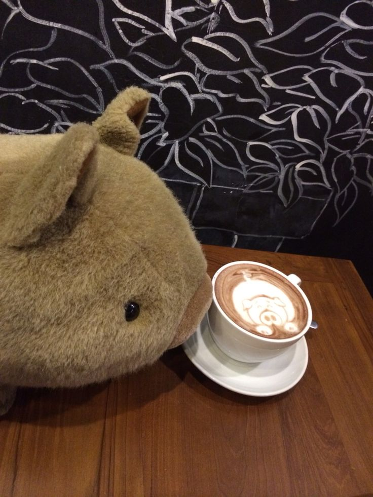 Pig vs Pig. My favourite item. Too cute to drink