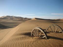 Living In The (Food) Desert