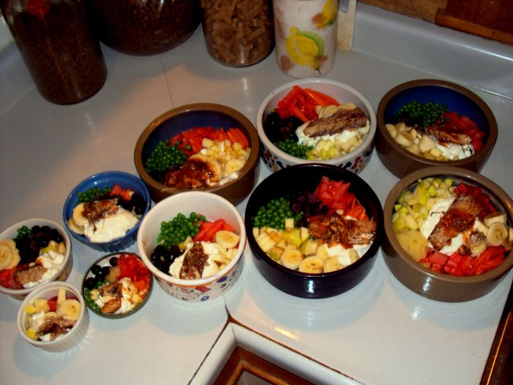 Homemade Dog Food Plus Supplements