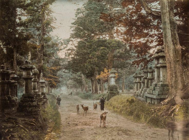 http://mult-kor.hu/ritka-szines-fotok-az-1870-es-evekbeli-japanrol-20160222?utm_source=social