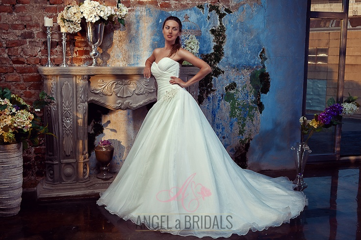 Gorgeous bride in a magnificent wedding dress
