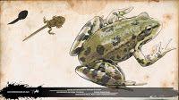 rana común pelophylax perezi