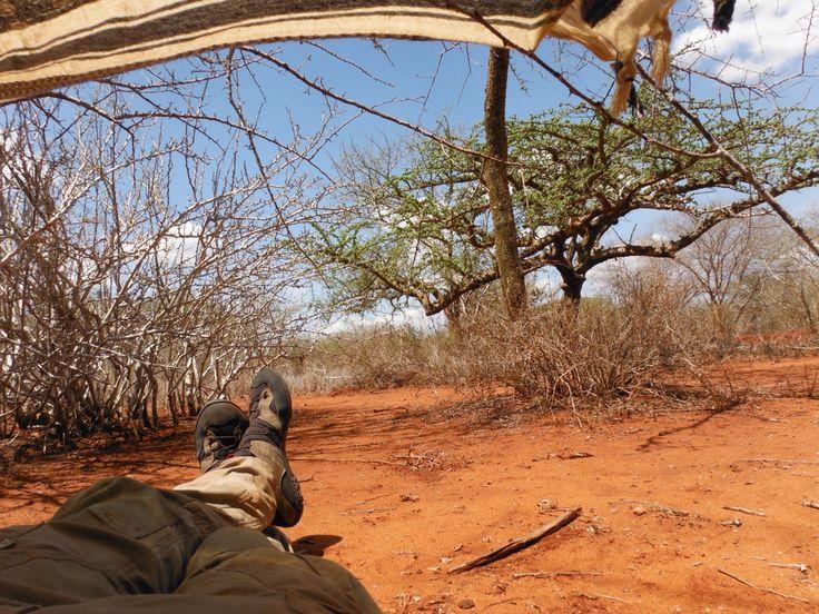 Test KROSS TERRA, Kenya. ... Relax nelle ore più calde durante il trekking ...