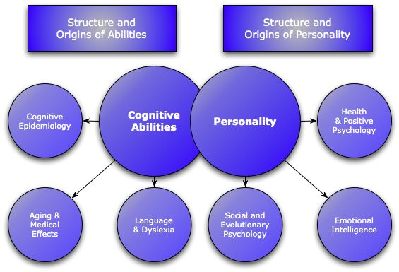 Different Areas of Study in Cognitive Psychology with ...
