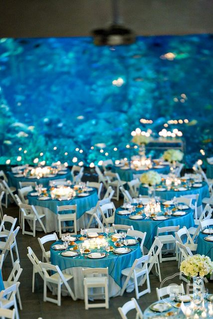 Aquarium Wedding- If I can't get my beach wedding this is for sure option number two