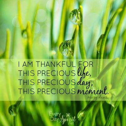Gratitude opens the heart to more blessings. #gratitude For the app of wallpapers ~ www.everydayspirit.net xo