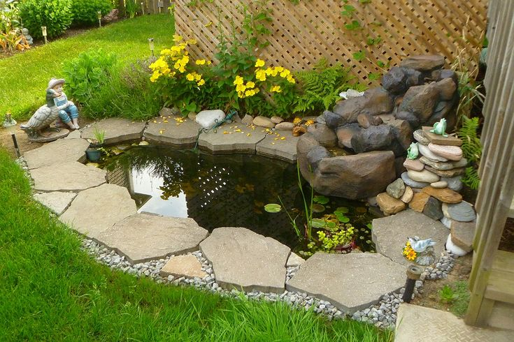 1000 images about our happy customers on pinterest Outdoor pond fish for sale