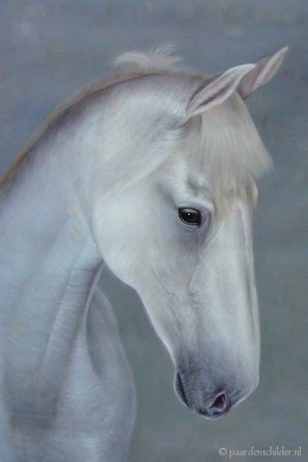 Wit paard schilderij