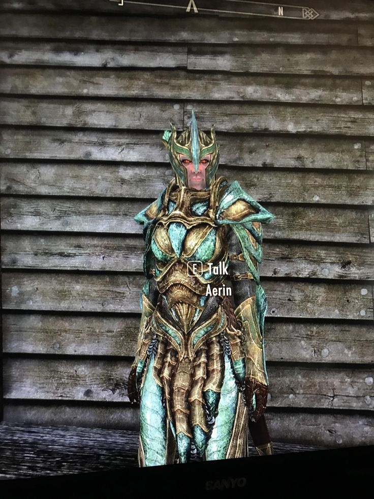 I found this Aerin npc during one of the Rescue missions for the Dawnguard. The only Aerin I know is the one following Mjoll so who is this Glass clad female Aerin? I have mods but none I know of that add npcs. #games #Skyrim #elderscrolls #BE3 #gaming #videogames #Concours #NGC