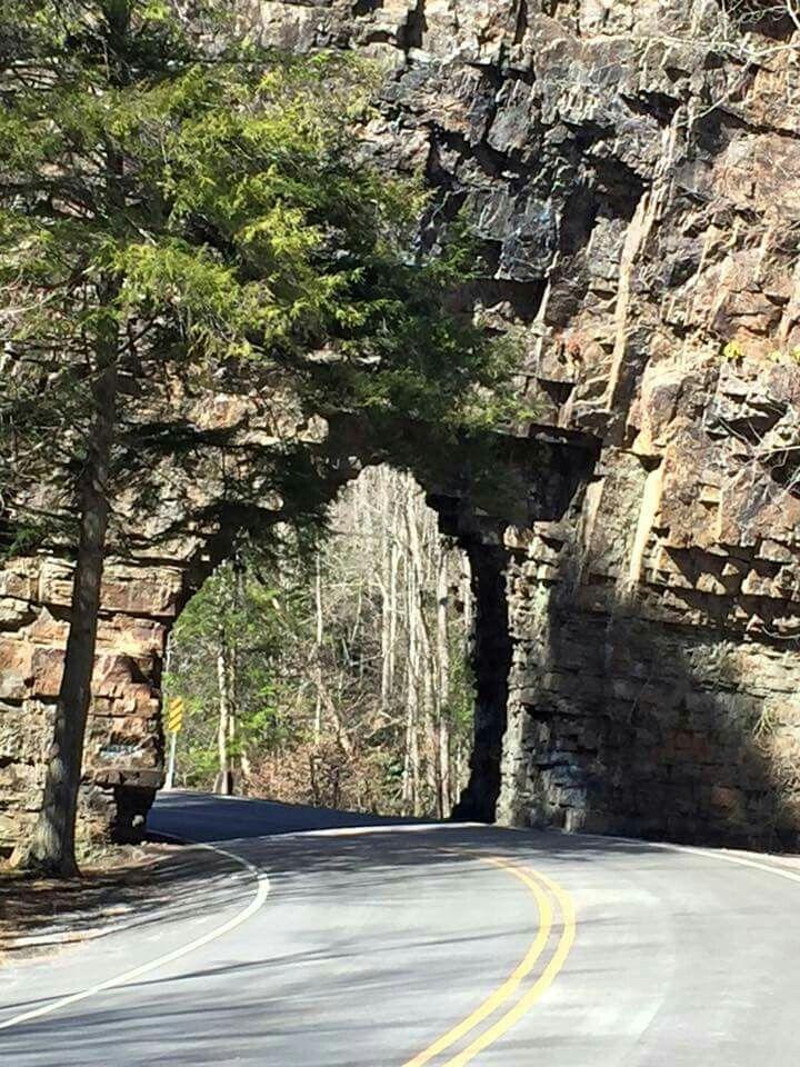 Backbone rock Cherokee National Forest