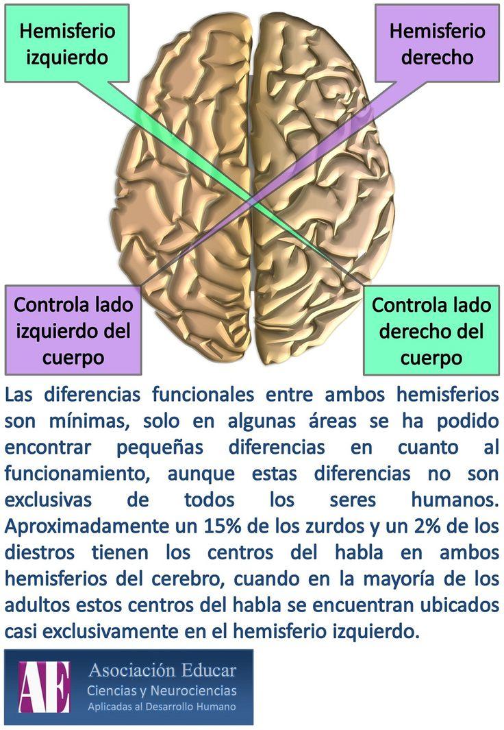 Asociación Educar - Ciencias y Neurociencias aplicadas al Desarrollo Humano - www.asociacioneducar.com