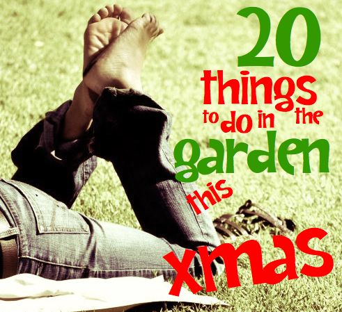 Summer activities   20 things to do in the garden this Christmashttp://savingsroom.com.au/wp-content/uploads/2013/10/thingstodogardenxmas.jpg http://savingsroom.com.au/summer-activities-20-garden-christmas/If you live in the Southern Hemisphere, summer activities include hanging out in the garden on a superb summer afternoon over Christmas. #ThingstoDo