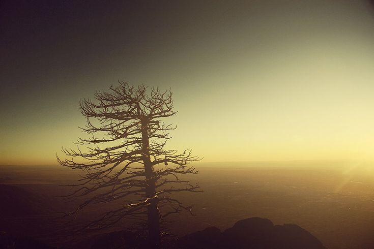Lovelove.: Soft Colors, Navy Photography, Sunrise, Nice Landscape