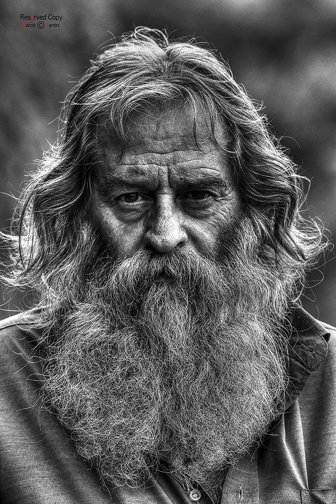 Flavio (by Marco Tantini) [old man with beard] | Old man ...Old Man Face Beard