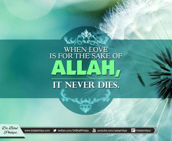 150+ Inspirational Islamic Quotes About Life With Beautiful Images