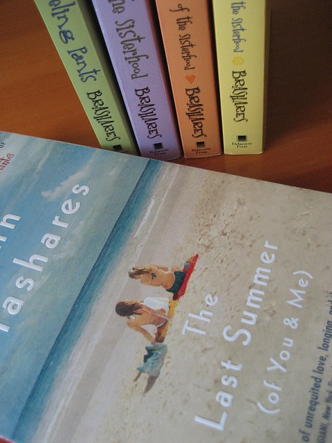 sisterhood of the traveling pants 3 book pdf