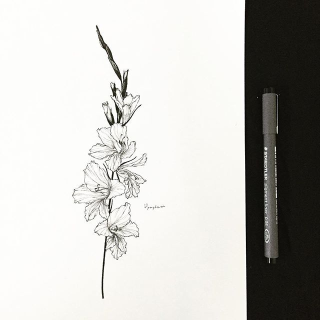gladiolus  다섯개의 꽃  Tattooist Hongdam   Seoul, Korea
