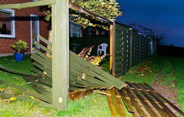 En storm kan blæse et løst hegn, stakit eller plankeværk omkuld. Foto: Jesper Elgaard