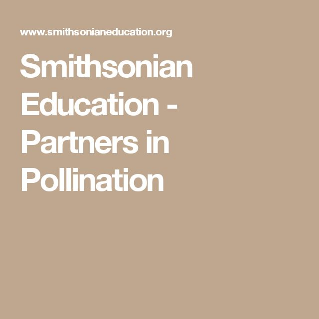 Smithsonian Education -  Partners in Pollination