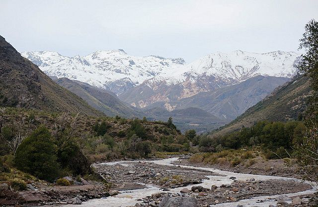 Los Queñes and the Andes, Chile. View post