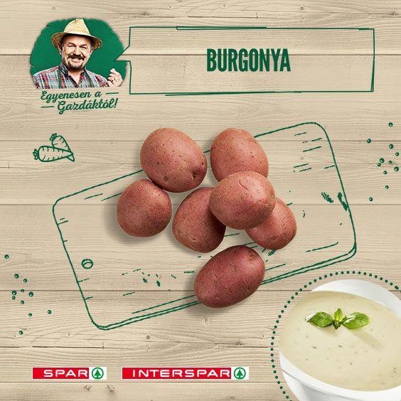 """Burgonya, krumpli, kolompér…. Még a nevei is változatosak, hátmég az elkészítési módjai! Az egyiket itt találod: http://www.spar.hu/hu_HU/spar_chef/receptek/leves/tejfolos_burgonyakremleves_varganyagombaval.html"""""""