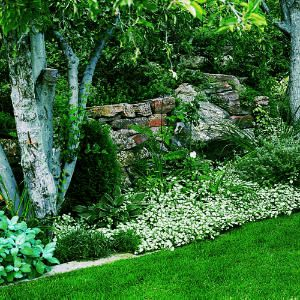 Shade Garden Design shade garden design ideas Shade Gardens That Shine