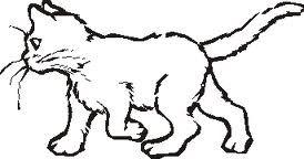 tattoo di gatti - Cerca con Google